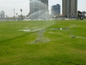 ccp-waterwaste