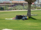 people-resting-in-shade