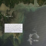 50 Days of Oil Spill and More to Go!