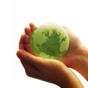 Sustainability and the Individual